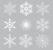 Vector set of 9 white snowflakes — Stock Vector