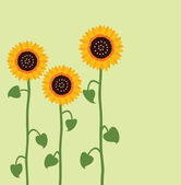 Vector sunflower summer background — Stock Vector