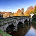 Bridge over main lake in Stourhead Gardens during Autumn. — Stock Photo #51875205