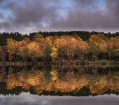 Beautiful vibrant Autumn woodland reflecions in calm lake waters — Stock Photo
