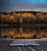 Book concept Beautiful vibrant Autumn woodland reflecions in cal — Stock Photo