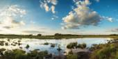 Summer sunset panorama landscape over wetlands — Stock Photo