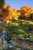 Stunning vibrant Autumn landscape of waterfall — Stock Photo