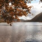 Panorama landscape fishing hut on mountain lake in Autumn — Stock Photo #53739569