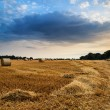 Rural landscape image of Summer sunset over field of hay bales — Stockfoto