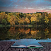 Book concept Beautiful vibrant Autumn woodland reflecions in cal — Stockfoto