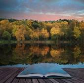 Book concept Beautiful vibrant Autumn woodland reflecions in cal — Stok fotoğraf