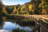 Stunning vibrant Autumn landscape of footbridge over lake in for — Stock Photo