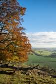 Stunning Autumn morning view over countryside landscape — Stock Photo