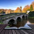Bridge over main lake in Stourhead Gardens during Autumn. concep — Stock Photo #55996295