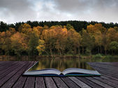 Beautiful vibrant Autumn woodland reflecions in calm lake waters — Stockfoto