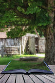 Ancient medieval ironmonger shed in forest landscape setting con — Stock Photo