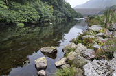 Landscape long exposure of river flowing through lush green fore — Stock Photo