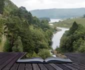 Imagen del paisaje mirando hacia abajo al río que fluye a través del bosque en — Foto de Stock