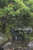 şelale uzun pozlama peyzaj görüntüsü yaz aylarında orman ayarları — Stok fotoğraf