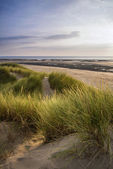 Summer evening landscape view over grassy sand dunes on beach — Stock Photo