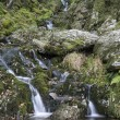 Waterfall long exposure landscape image in Summer in forest sett — Stock Photo #59697471