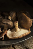 Fresh shiitake mushrooms in moody natural light setting with vintage style — Stock Photo