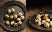Compilation of moody natural lighting setting of quaills eggs wi — Stock Photo