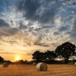 Rural landscape image of Summer sunset over field of hay bales — Stock Photo #68038961