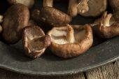 Čerstvé houby Shiitake v náladové světlo přírodě s vin — Stock fotografie
