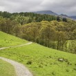 Lake District landscape with stormy sky over countryside anf fie — Stock Photo #75972439