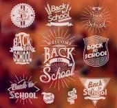 Back to School calligraphic designs — Stock Vector