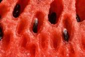 Juicy fresh sliced watermelon — Stock Photo