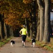 Woman running with two dogs on country road — Stock Photo #58870919