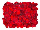 Beautiful red rose petals background — Stock Photo