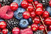 Different fresh berries — Stock Photo