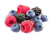 Fresh ripe berry on a white background — Stock Photo
