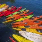 Kayaks — Stock Photo #76362523