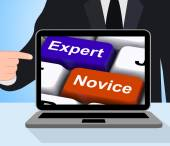 Expert Novice Keys Displays Beginners And Experts — Stock Photo