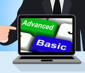 Advanced And Basic Keys Displays Program Levels Plus Pricing — Stock Photo