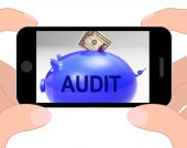 Audit Piggy Bank Displays Auditing Inspecting And Finances — Stock Photo