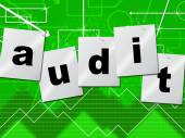 Graph Audit Indicates Auditing Infograph And Scrutiny — Stock Photo