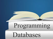 Databases Programming Indicates Software Design And Application — Stock Photo
