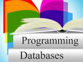 Databases Programming Means Software Development And Byte — Stock Photo