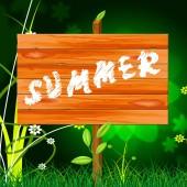 Nature Summer Represents Outdoors Rural And Natural — Stock Photo