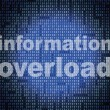 Overload Information Shows Encumber Bytes And Overloading — Stock Photo #54207895