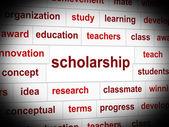 Scholarship Education Indicates Educating Train And Development — Stock Photo
