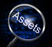 Assets Magnifier Indicates Valuables Searching And Search — Stock Photo