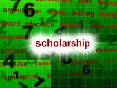 Education Scholarship Shows School Training And Schooling — Stock Photo