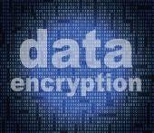 Data Encryption Represents Cryptography Protect And Login — Stock Photo