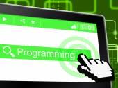 Programming Programmer Represents World Wide Web And Development — Stock Photo
