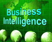 Business Intelligence Means Know How And Biz — Stockfoto