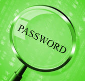 Password Magnifier Means Log In And Account — Stock Photo