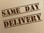 Same Day Delivery Indicates Fast Shipping And Distributing — Stock Photo