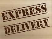 Express Delivery Means High Speed And Action — Stock Photo